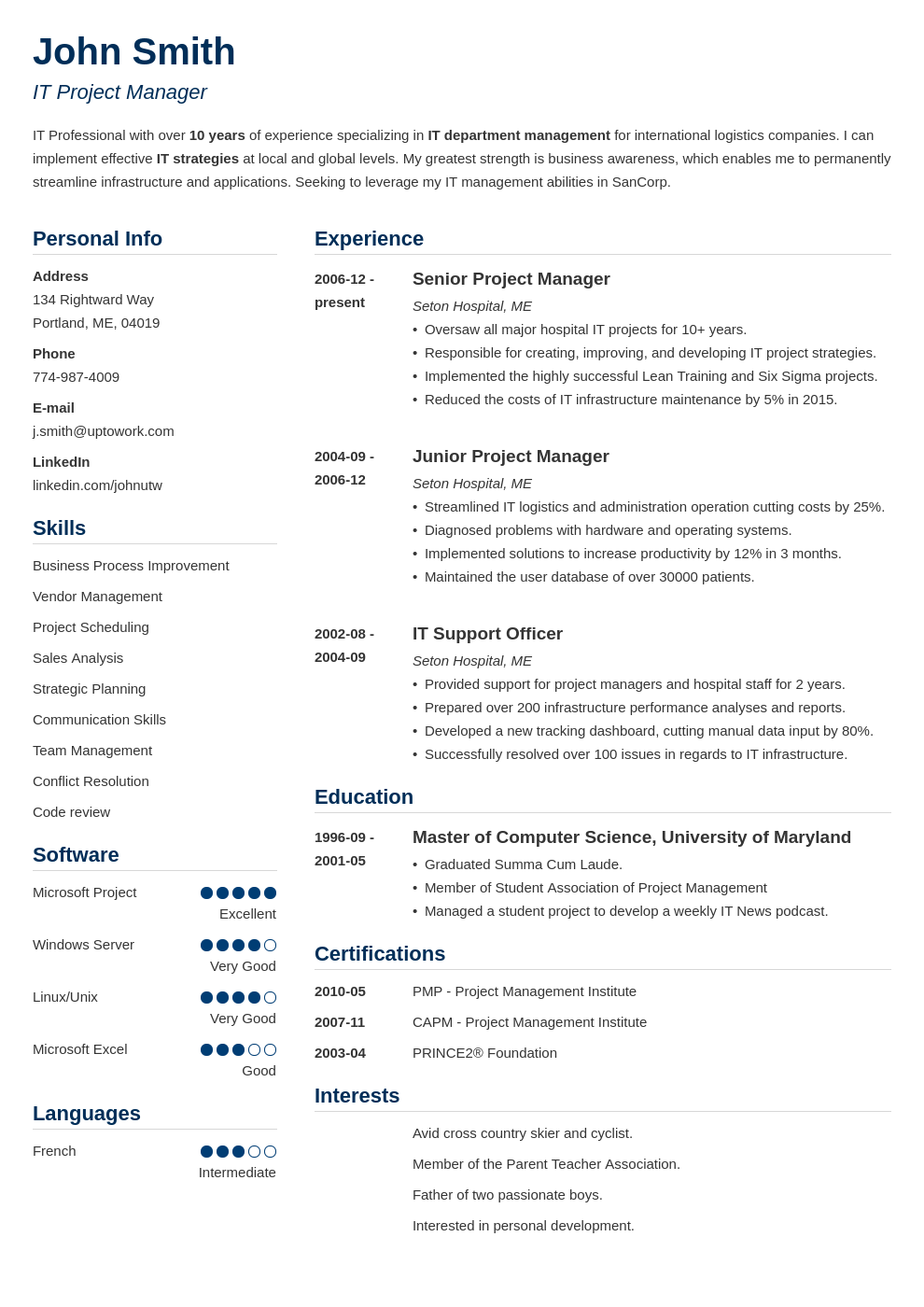 Professional CV Template Simple
