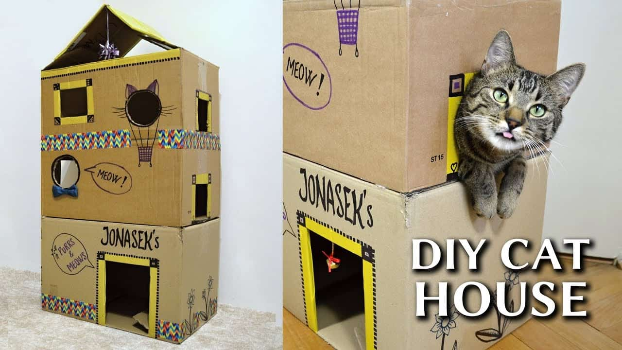 Epic cardboard cat house