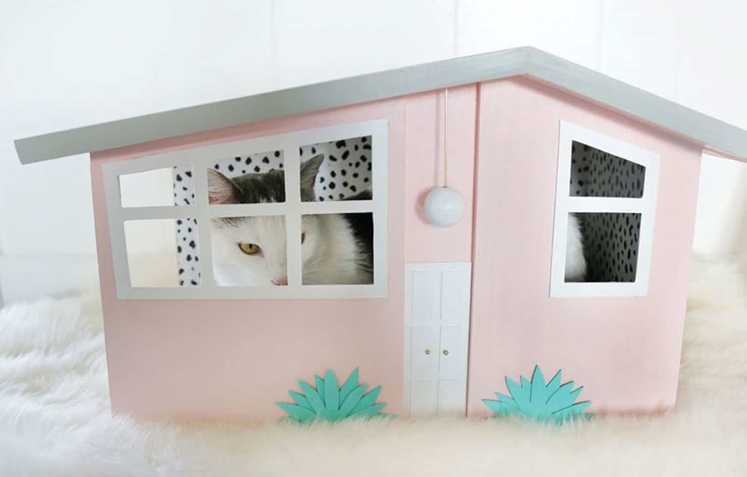 Palm springs inspired cat house