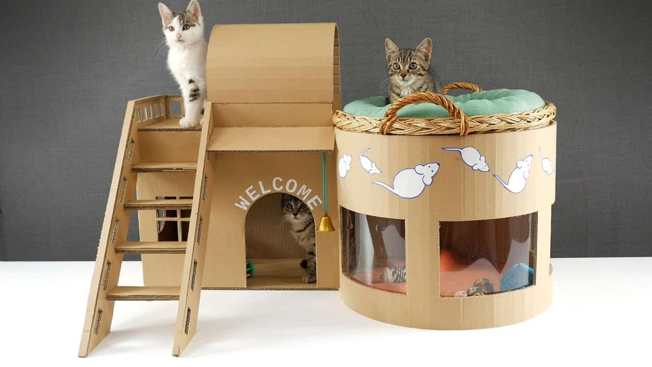 Rounded cardboard cat house with ladder