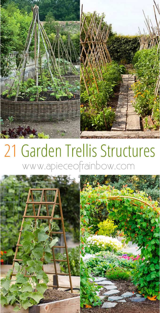 21 beautiful and DIY friendly garden trellis and structures, such as cucumber trellis, bean teepees, grape tunnels, pergolas, screens, etc. Create productive and enchanting garden spaces with trellis planters, panels, and more! - A Piece Of Rainbow